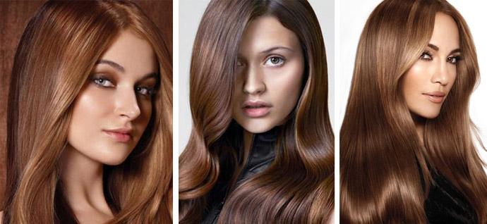 Фото волос шоколадных оттенков