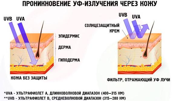 Как защитить кожу