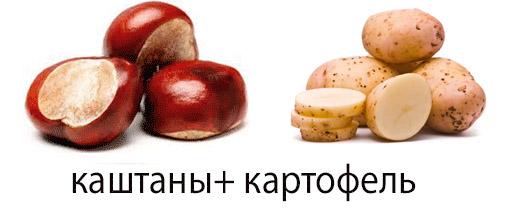 Каштан и картофель