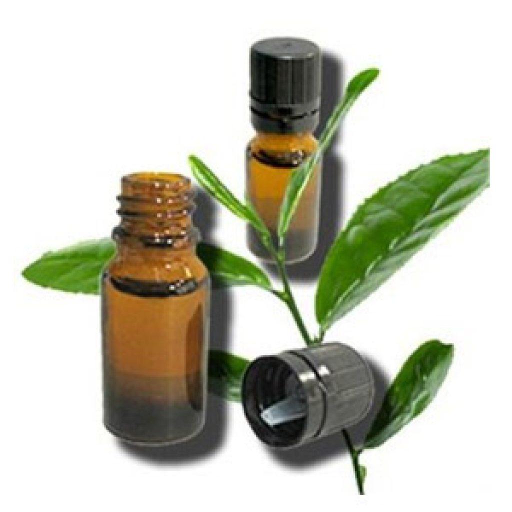 Масло чайного дерева для лечения прыщей - способы применения и отзывы