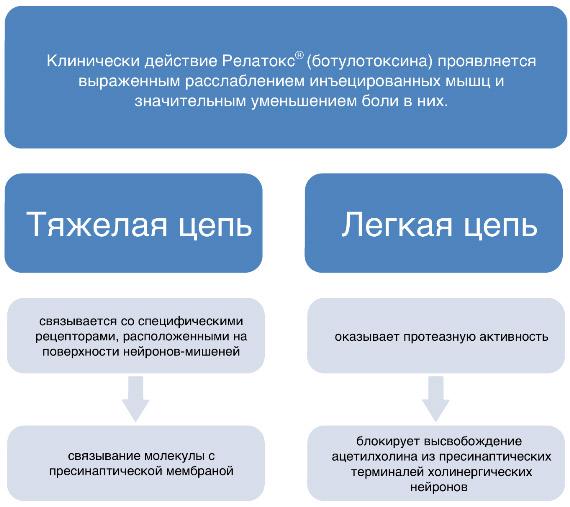 Особенности Релатокса