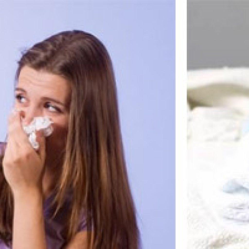 Аллергическая реакция на шерсть