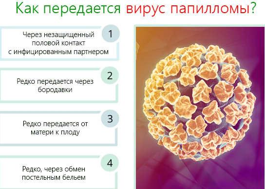 Как происходит заражение ВПЧ