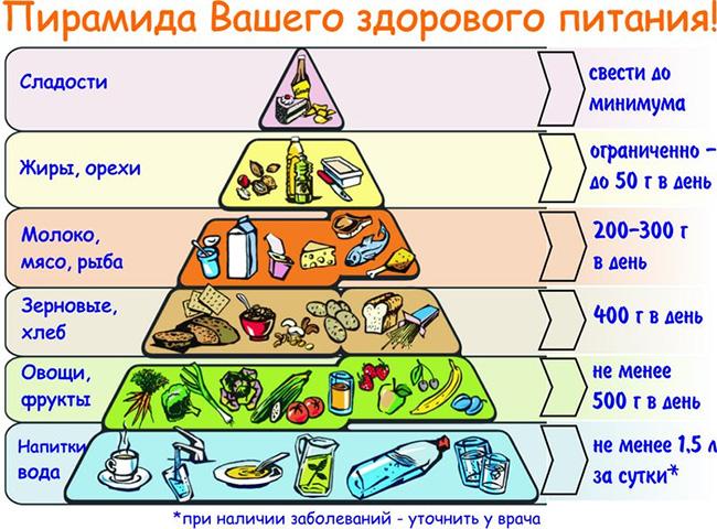 Основы здорового питания