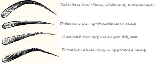 Типы бровных дуг