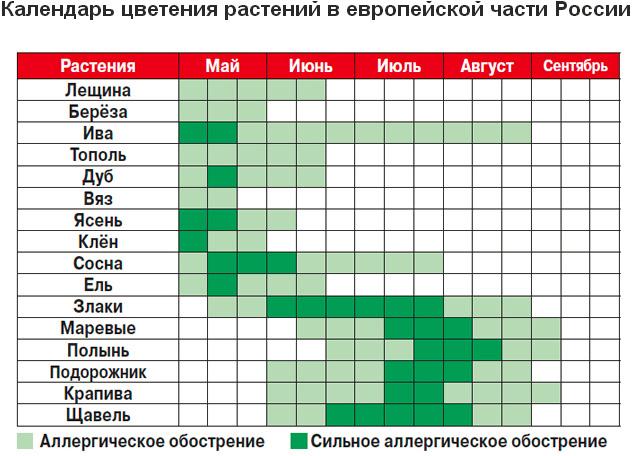 Календарь цветения растений