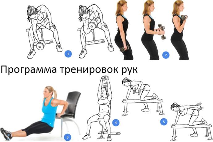 Тренировка рук