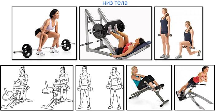 Упражнения для нижней части тела