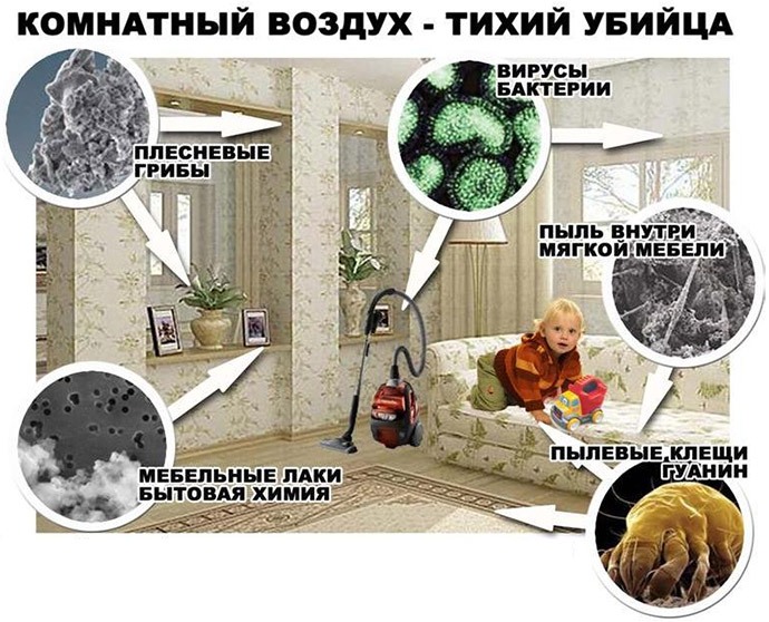 Аллергены в комнате