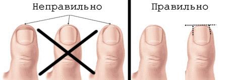 Как стричь ногти