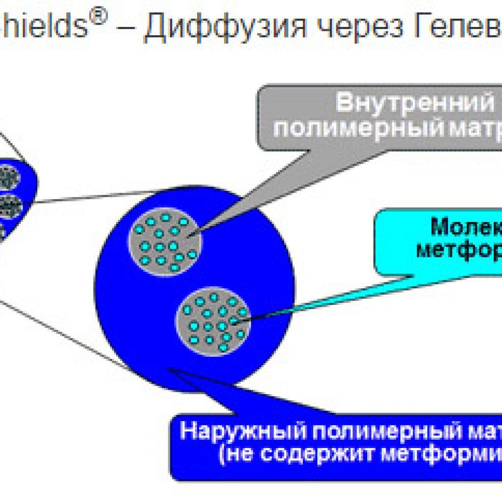 Метформин пролонгированного действия