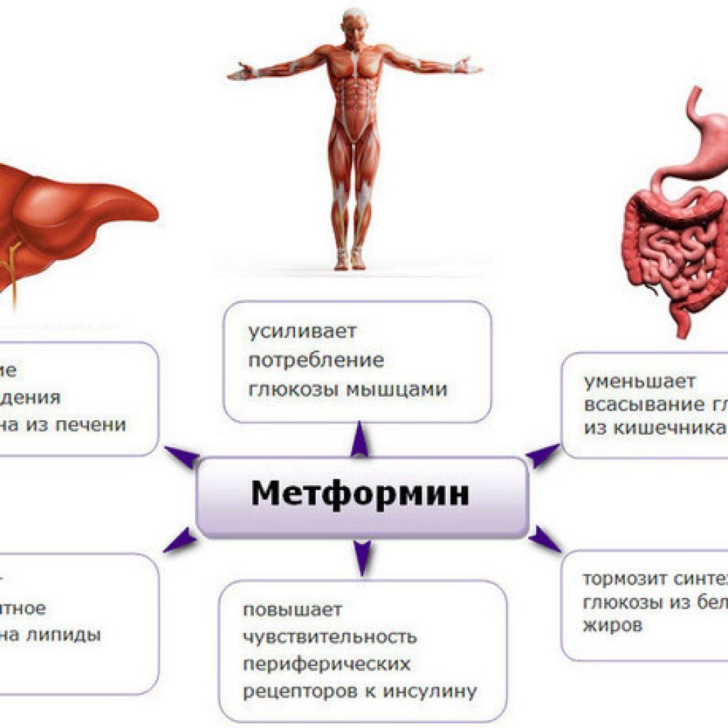 Преимущества Метформина
